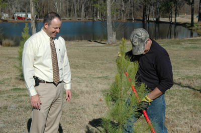 Trees Added at Ogeechee Tech.